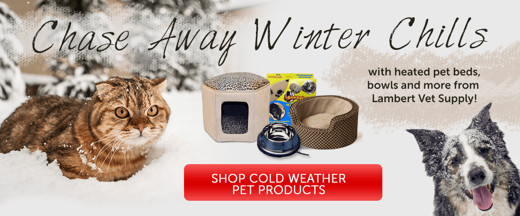 Shop cold weather pet products at Lambert Vet Supplpy
