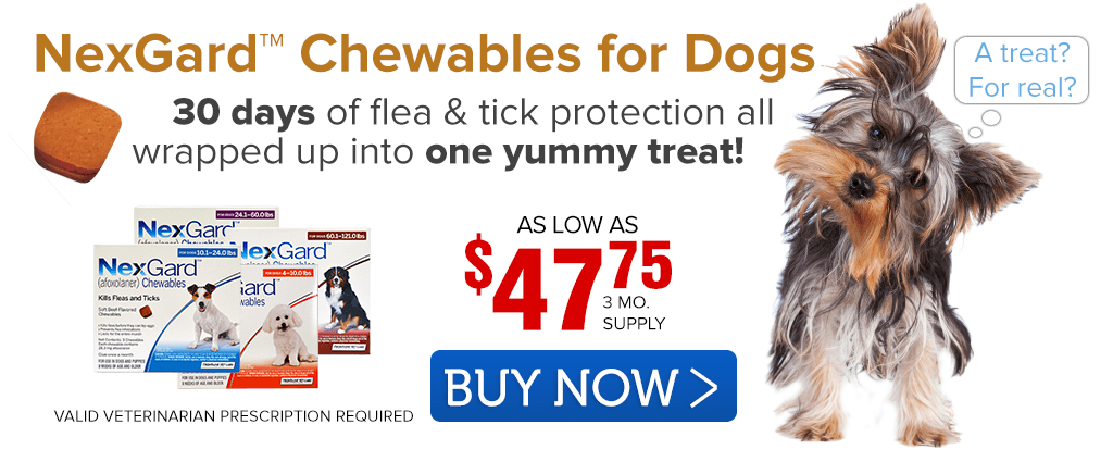 Shop NexGard Chewables for Dogs