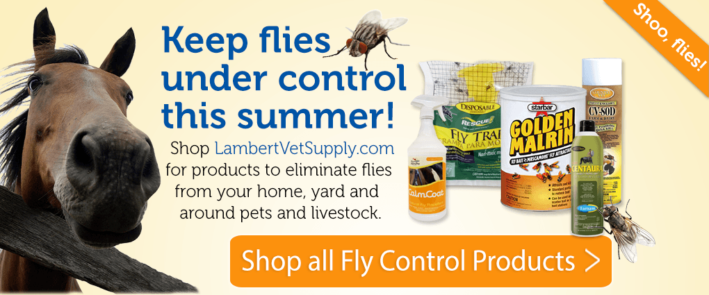 Shop Fly Control Products