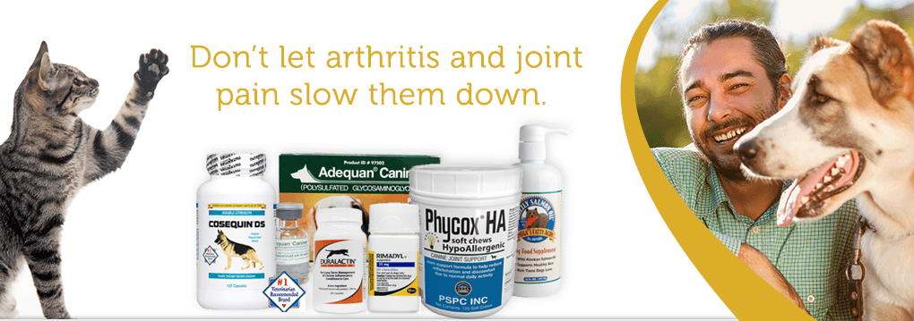 Shop Arthritis & Joint Relief