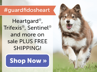 SAVE on Heartworm Preventatives and get FREE Shipping!
