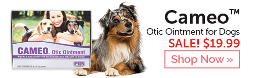 Shop Cameo Otic Ointment for Dogs