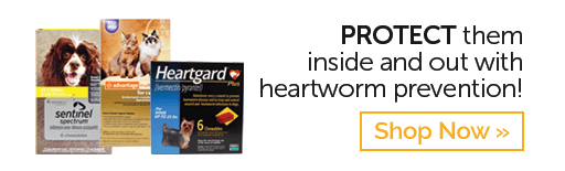 SAVE On Heartworm Prevention