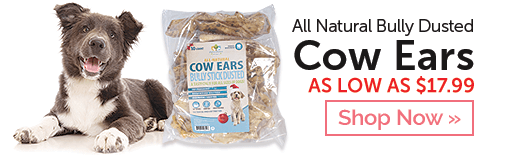 Shop All Natural Bully Dusted Beef Ears