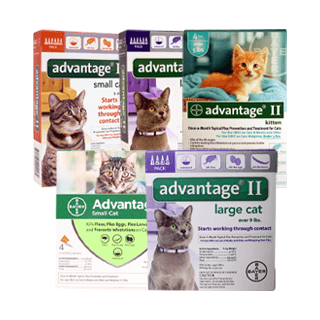 Shop Advantage® II for Cats