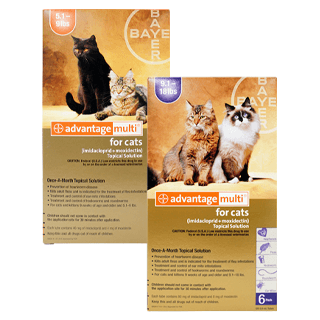 Shop Advantage Multi® for Cats Rx