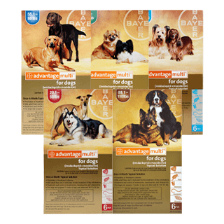 Shop Advantage Multi® for Dogs Rx
