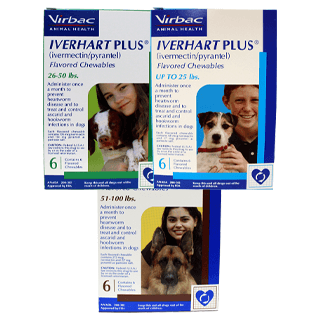 Shop Iverhart Plus® for Dogs Rx