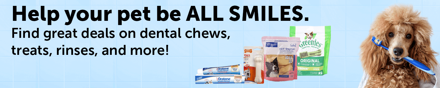 Shop Dental Products