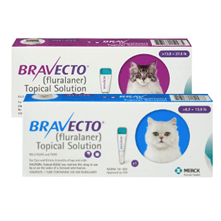 Bravecto Rx Topical Solution for Cats