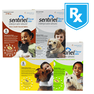 Shop Sentinel® for Dogs Rx
