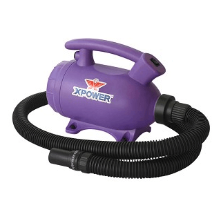 XPOWER B-55 Portable Home Pet 2-in-1 Dryer & Vacuum, Purple